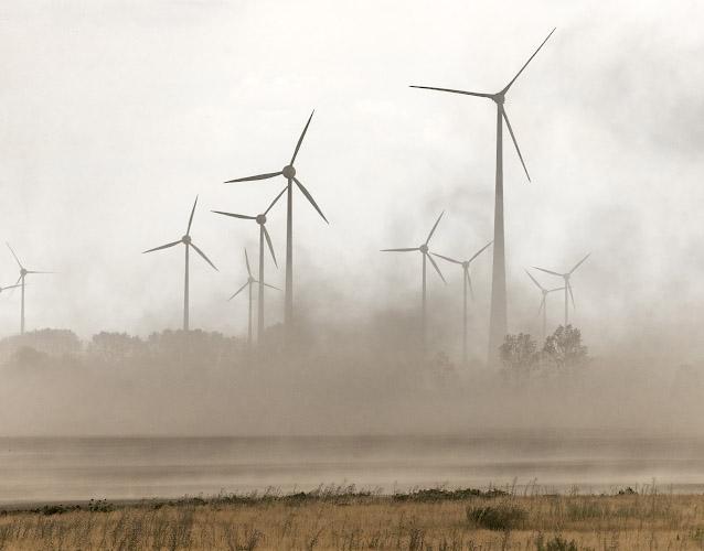Versteppung vor Windpark Elster Sachsen-Anhalt 2018